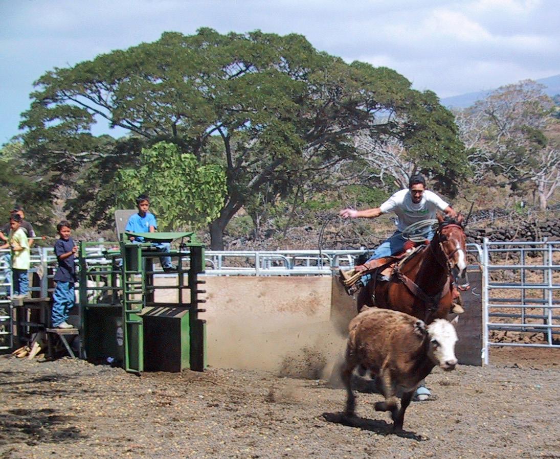 Rodeo Grounds off Hualalai
